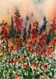 Spring Garden    2-09