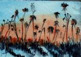 Winter Weeds   4-09