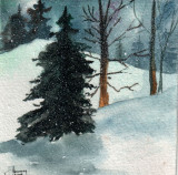 Winter Forest   1-10