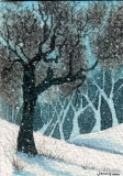 Forest Snow   1-10
