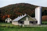 Near Pawlet, Vermont
