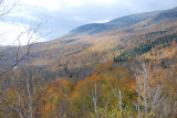 Near Pinkham Notch, New Hampshire