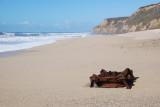Cowell Ranch Beach