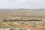 Dead cities from Hama april 2009 8649.jpg