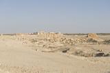 Palmyra apr 2009 0054.jpg