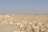Palmyra apr 2009 0056.jpg
