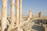 Palmyra apr 2009 0074.jpg