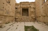 Palmyra apr 2009 0245.jpg