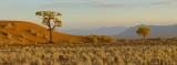 wolwedons panorama