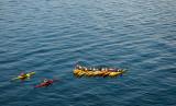 Kayaks #2