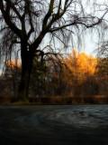 Last glimpse of sun