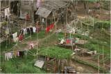 River settlement-Phnom Penh
