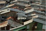 settlement roofs-Phnom Penh