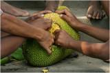 Jackfruit-Kandal Province