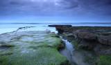 landscapeImage70copy.jpg