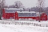 Knox Farm 9:32 AM