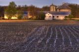 Sunshine On The Farm