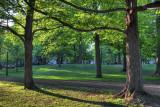 More Hamlin Park
