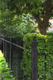 Fence On Wesley Place
