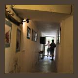exhibition: nizas off