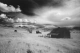 Infrared Film Landscapes