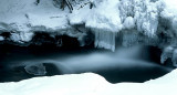 Ice Udder