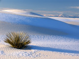 White Sands National Monument January 2007