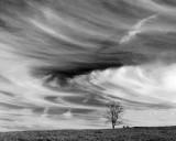 Skyclone