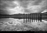 Landscapes BW