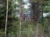 Norska jägare på flanken