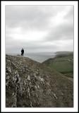 Cardiganshire Coast