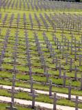 Verdun 2008-Douaumont-40152.jpg