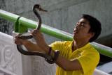 Thaimaa2007-323.jpg