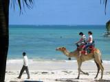 Holiday in Mombasa and Wild Safari in Tsavo