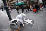 White Man -  Street artist preparing for work....