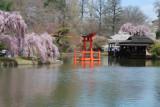 Topaz Spring