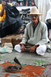 Close-up of the snake charmer at Place Djemaa El-Fna in Marrakech.