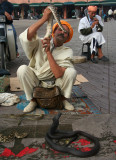 It cost me 20 Moroccan dirhams (about  $2.50 U.S. dollars) to get this snake charmer's photo!