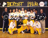 Men's Volleyball 2008