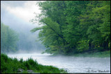 Pine Creek fog