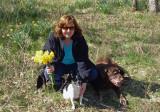 Daffodils 2010 022.jpg