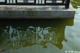Lingnan Garden DSC_2825