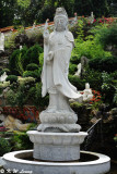 Buddha (DSC_2682)