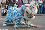 Lion dance DSC_2877