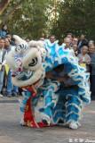 Lion dance DSC_2878