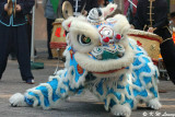 Lion dance DSC_2865