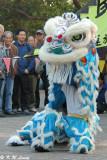 Lion dance DSC_2881