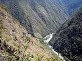 Inca_Trail_Ascending.jpg