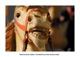 Merry-go-round horses 20