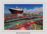 Boats 15 (La Cotiniere)